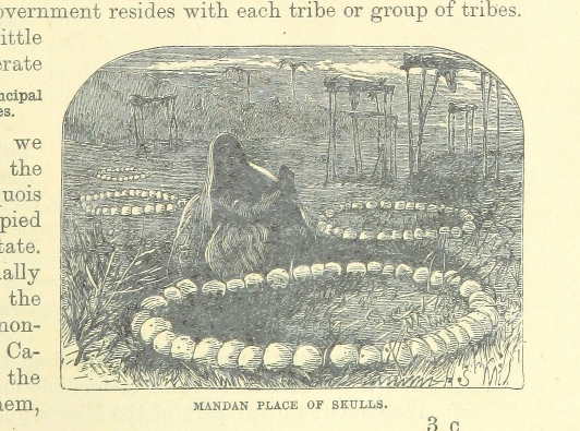 The World's Inhabitants; or, Mankind, animals & plants ... With ... illustrations, etc (1889)
