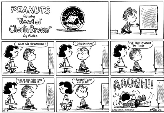 Peanuts cartoon, originally published 9 December 1973, via http://peanuts.wikia.com/